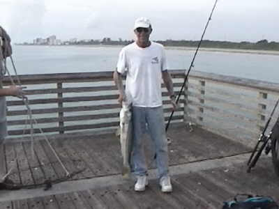 Snook fishing till the end in south florida from fishing piers for Pier 60 fishing