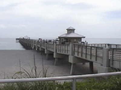 Juno beach fishing pier for Juno pier fishing report